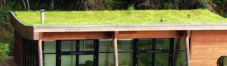 turf live roof