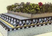 green roof garden roofing system